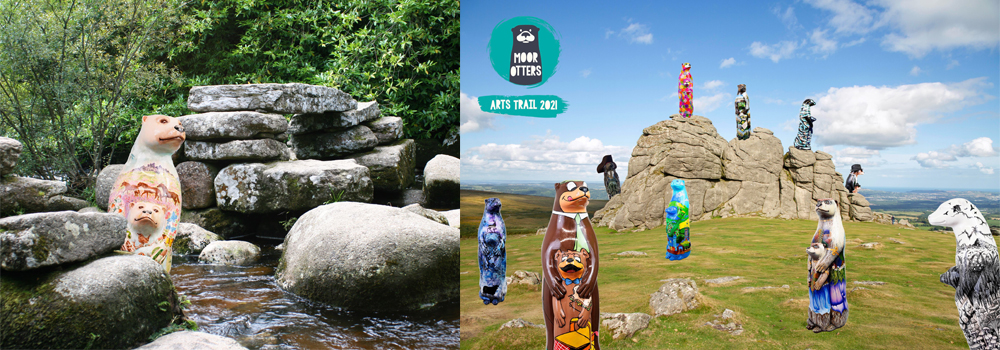 Explore the Moor Otter Trail while on holiday in Devon with Devon Farm Holidays.