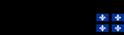 \\HYPNOS\Dossiers communs\Warby-Commun\Users\SimonFournier\Organisation Journée de la Recherche 2019\FRQS_RGB(multimedia-transparent).png