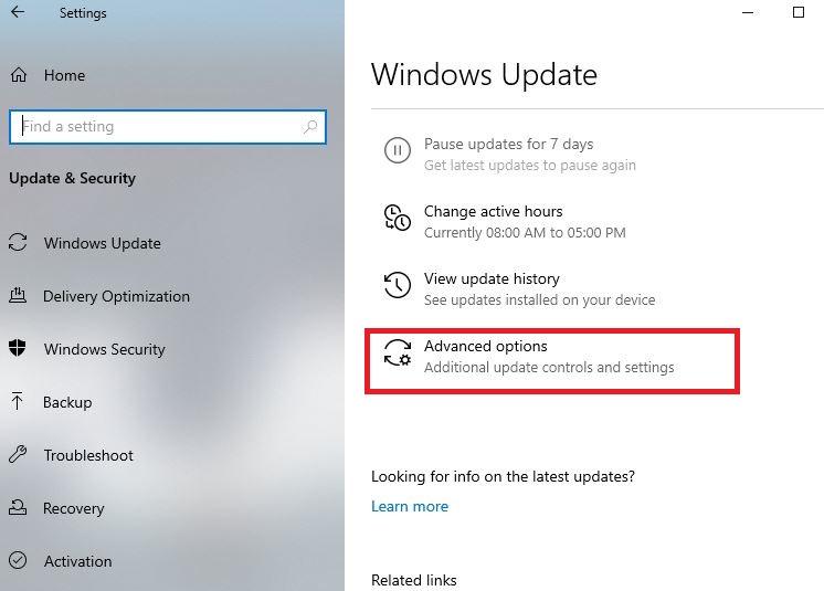 Advanced options in Windows update