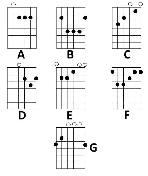 Learn To Play Guitar Chords The Easy Way!: The Basics Of