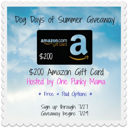 $200 Amazon GC Blogger Opportunity Signup, through 7/27