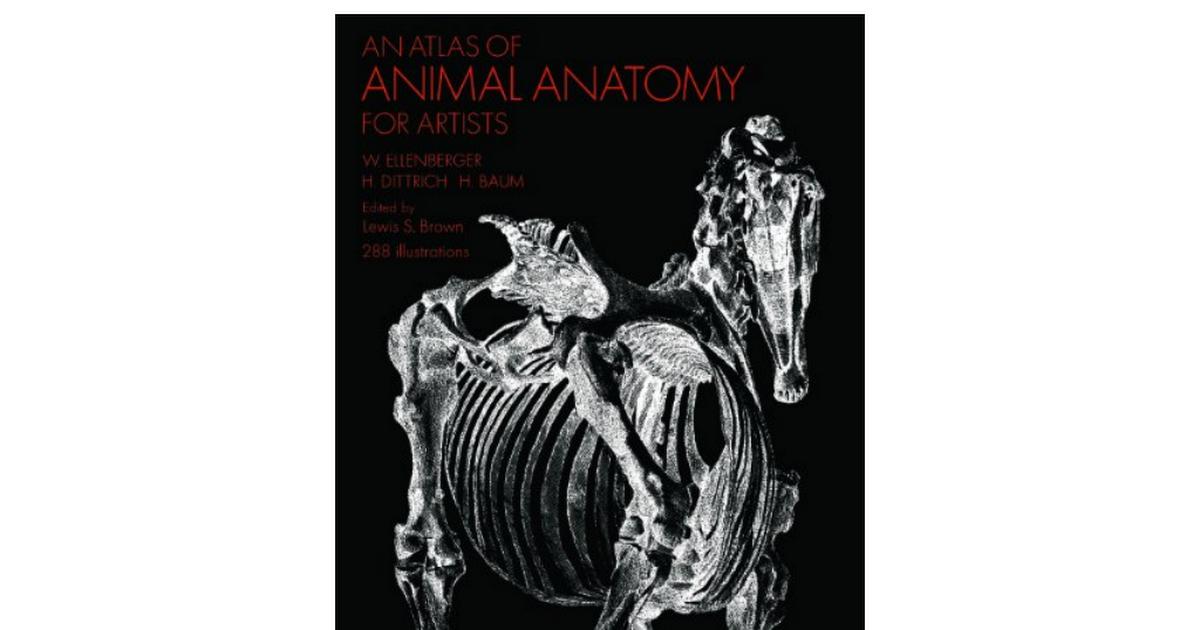 4Y0-Atlas-Animal-Anatomy-Artists-Dover-ebook.pdf - Google Drive