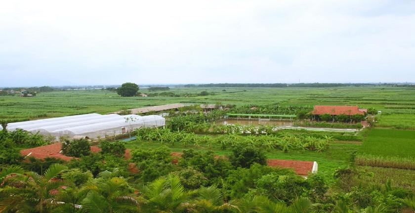 eco farm FLC Vĩnh Phúc