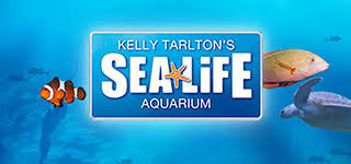Image result for kelly tarltons