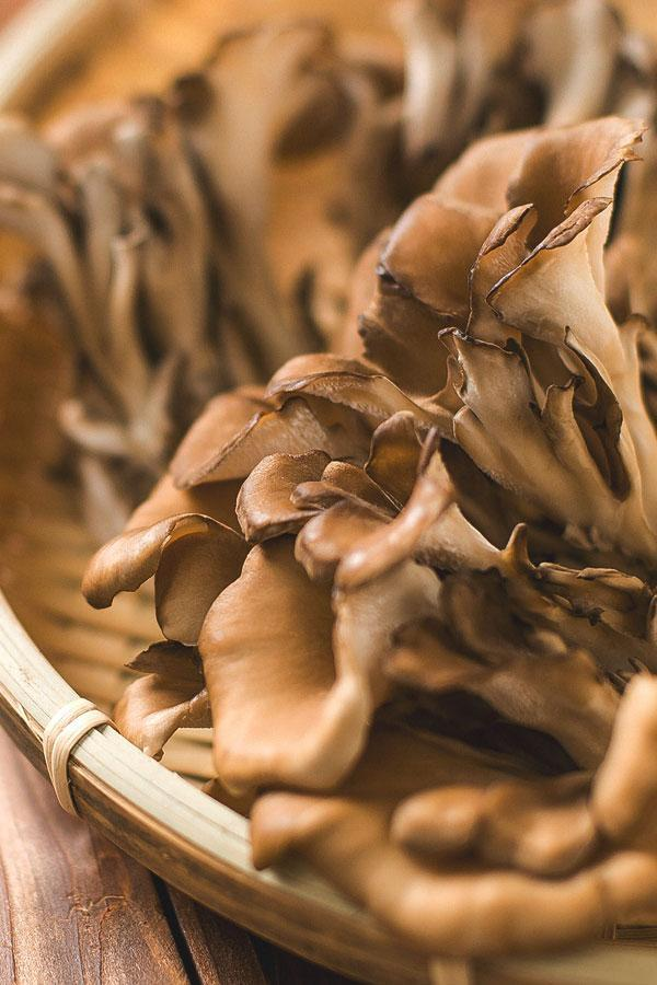 Maitake Mushroom: Risks, Benefits, and More