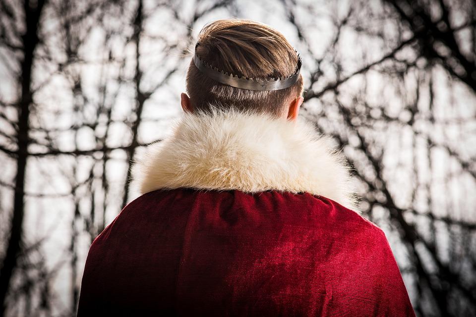 Guilt-Free Fur