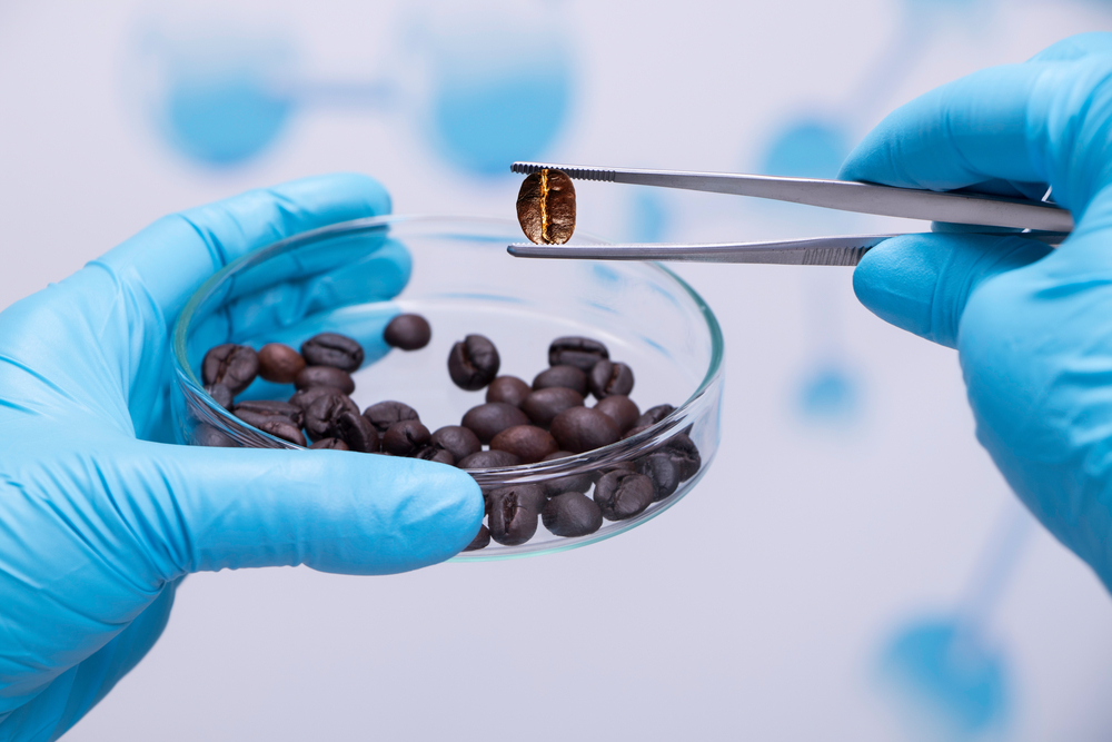 Instituições de pesquisa foram fundamentais para o desenvolvimento da cafeicultura brasileira. (Fonte: Shutterstock/Tonhom1009/Reprodução)