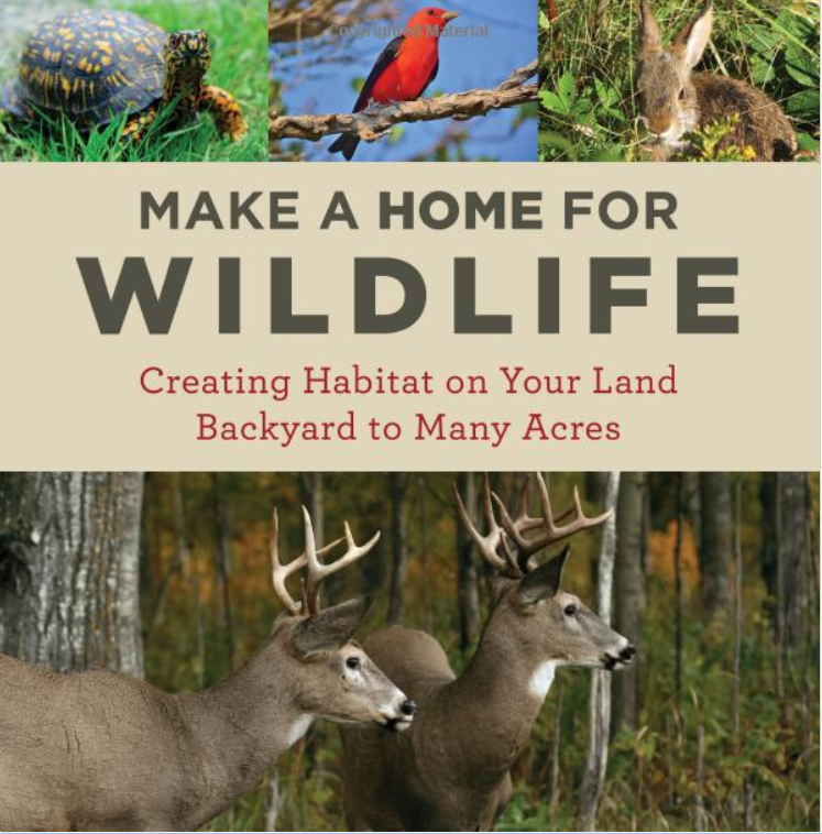 Make a home for wildlife environmental books