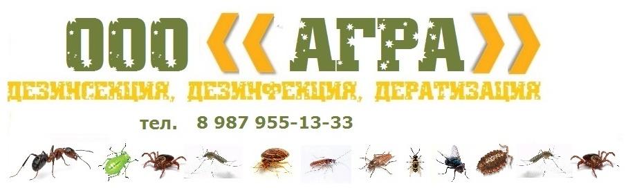 Уничтожение тараканов, блох, клопов и других насекомых с гарантией 100%, цена от 750 рублей за услугу. Где морить тараканов в Самаре ?
