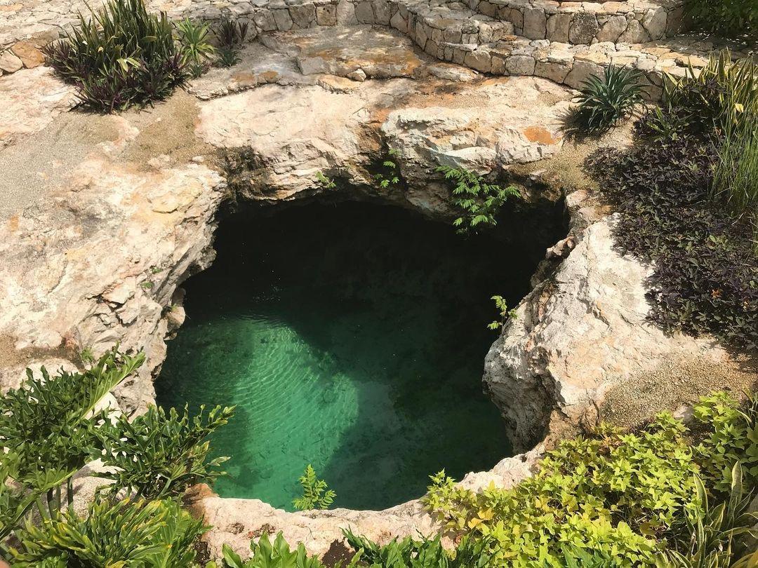 cenote de costco