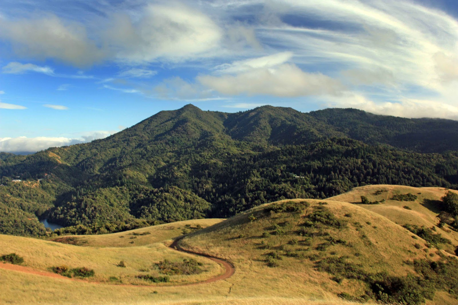 Image result for Mt Tamalpais