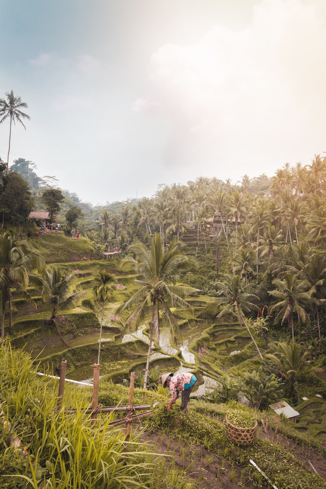 12 Tempat Wisata Terbaik Di Indonesia Yang Mendunia Tripcetera