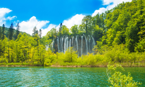 A képen fa, kültéri, fű, víz látható  Automatikusan generált leírás