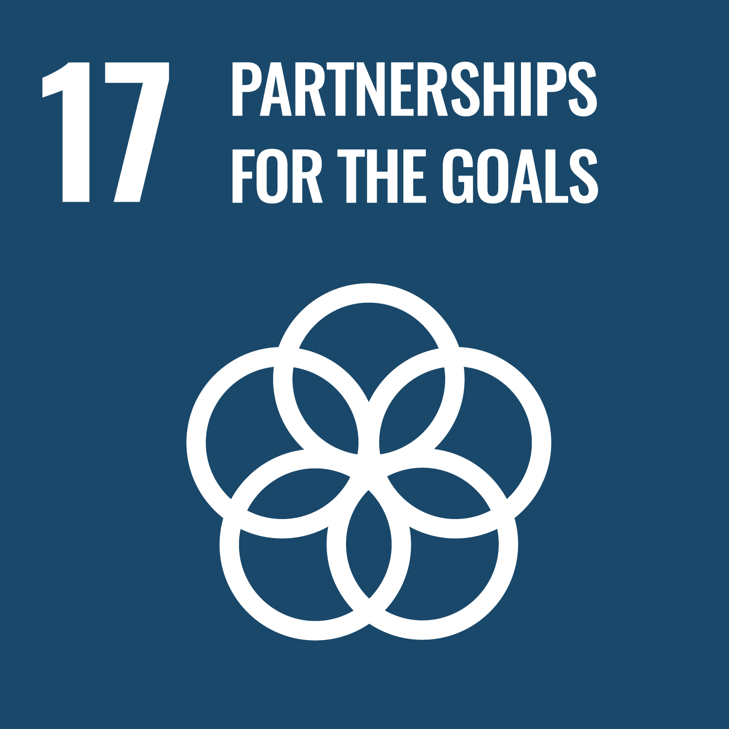 Sustainable Development Goal 17. Revitalize the global partnership for sustainable development.