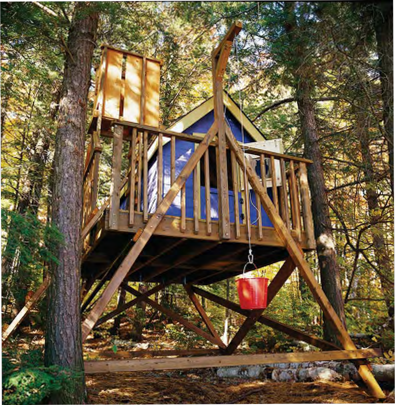 Tree House Plans & Design 1: Deluxe Treehouse Plan