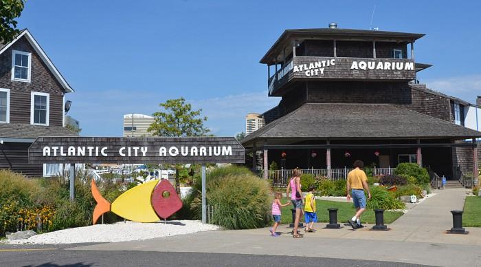 Image result for atlantic city aquarium