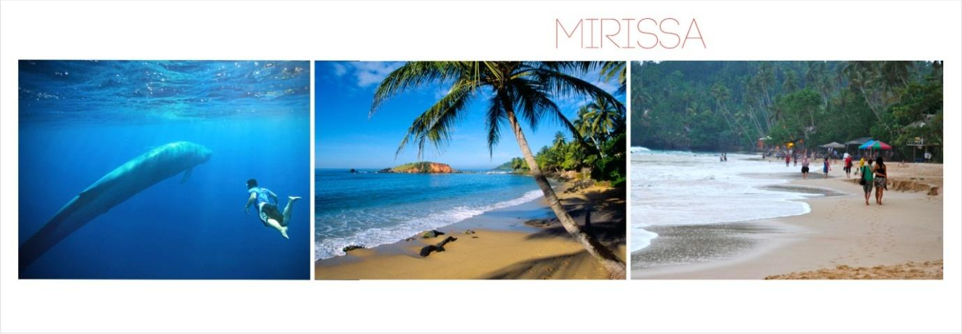 C:\Users\Ajith\Google Drive\Destinations Images\Mirissa\Mirissa.jpg