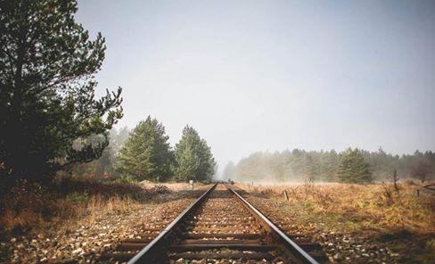 画像に含まれている可能性があるもの:道路、木、空、屋外