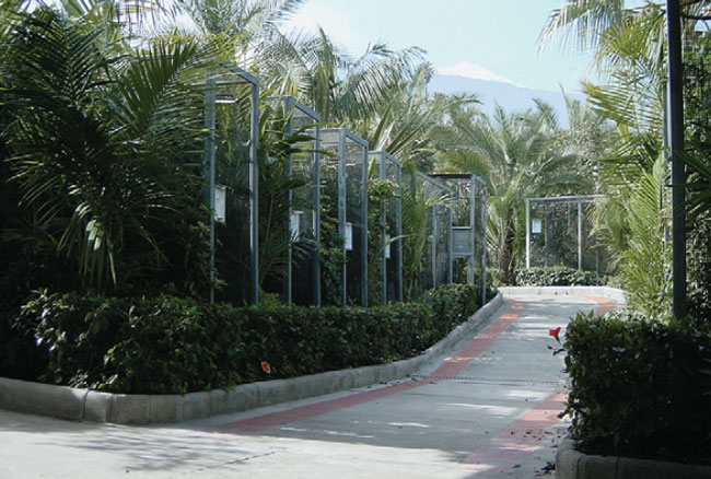 Cooperation with the gardeners helps achieve pleasant looking cages, while avoiding toxic plants