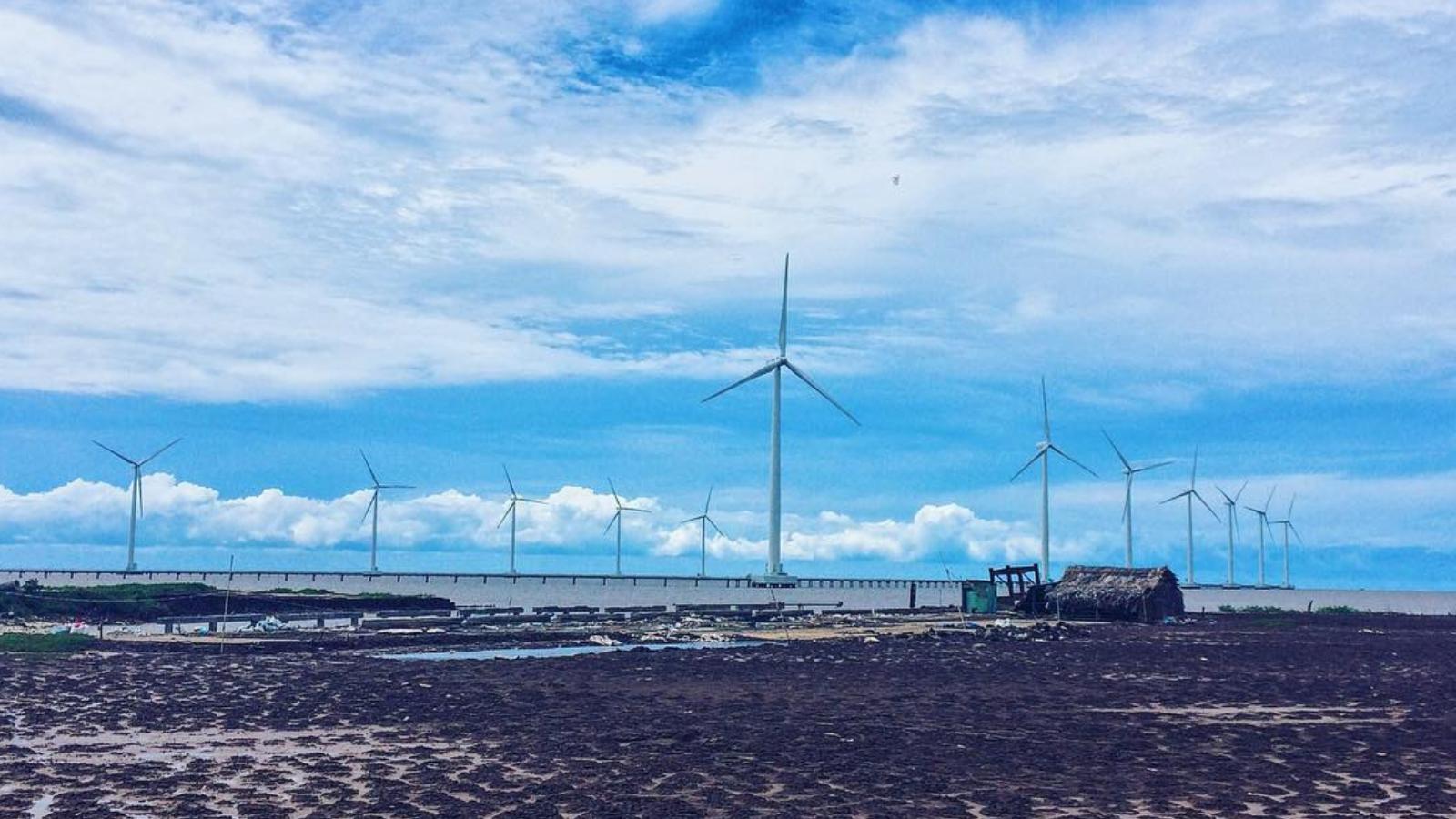Cánh đồng quạt gió ở thành phố Bạc Liêu