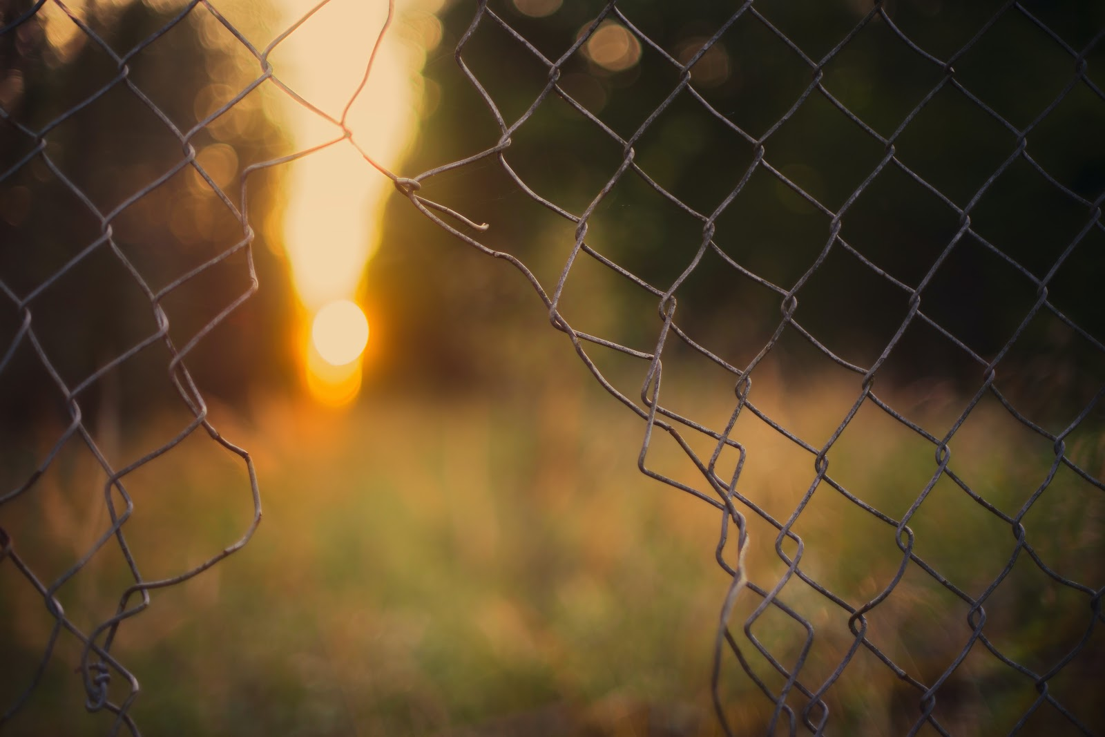 A hole in a chain link fence, leading into a grassy space with trees and sunshine.