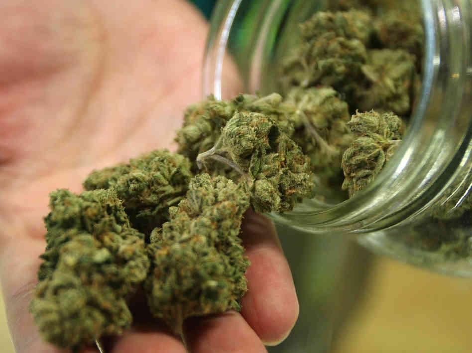 growing medical marijuana market