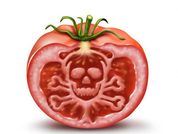 Diez alimentos que ayudan a pensar mejor - Cero contaminantes