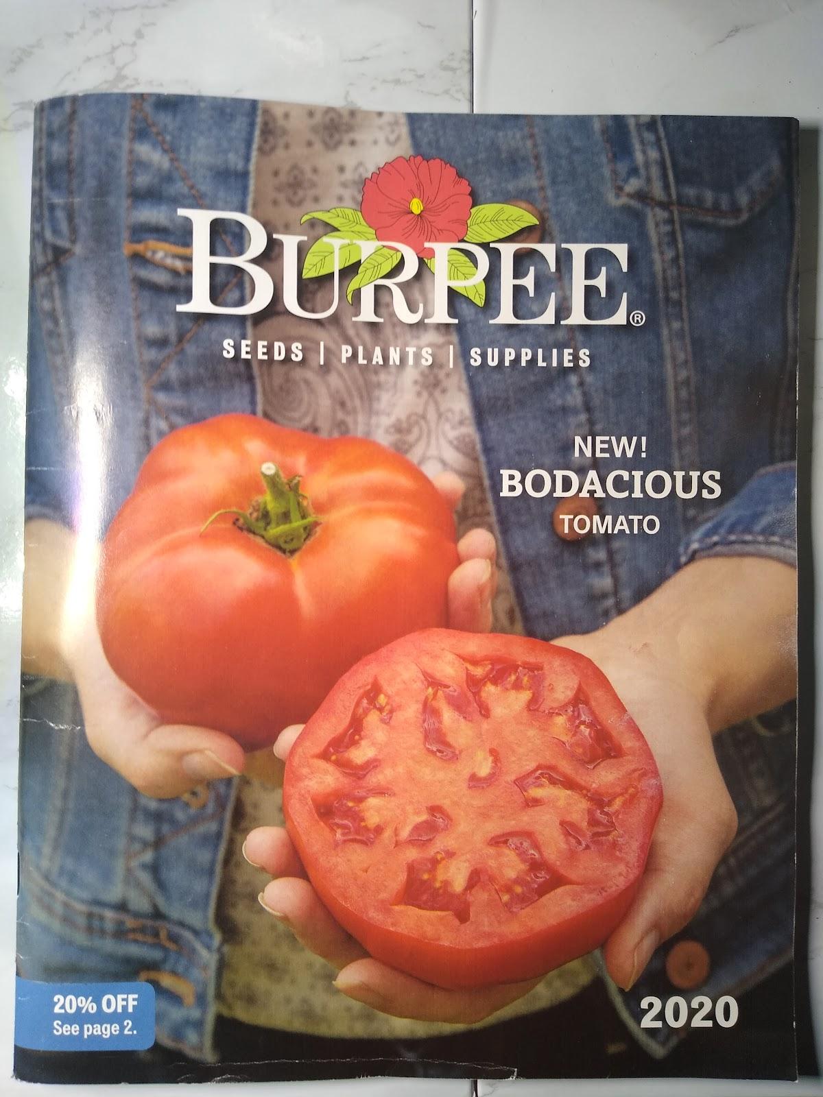 Burpee catalog picture