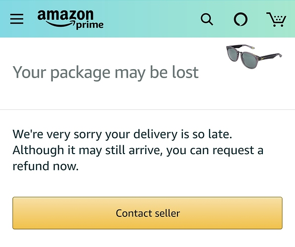 Example of Amazon lost shipping