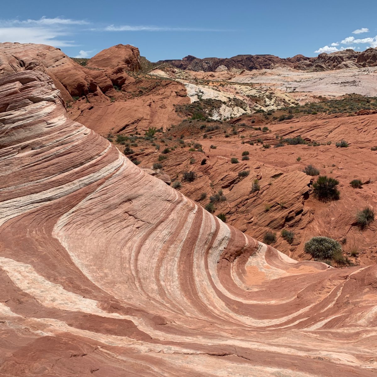 Hiking The Fire Wave Trail, Valley Of Fire State Park (Las Vegas, Nevada) -  Flying High On Points