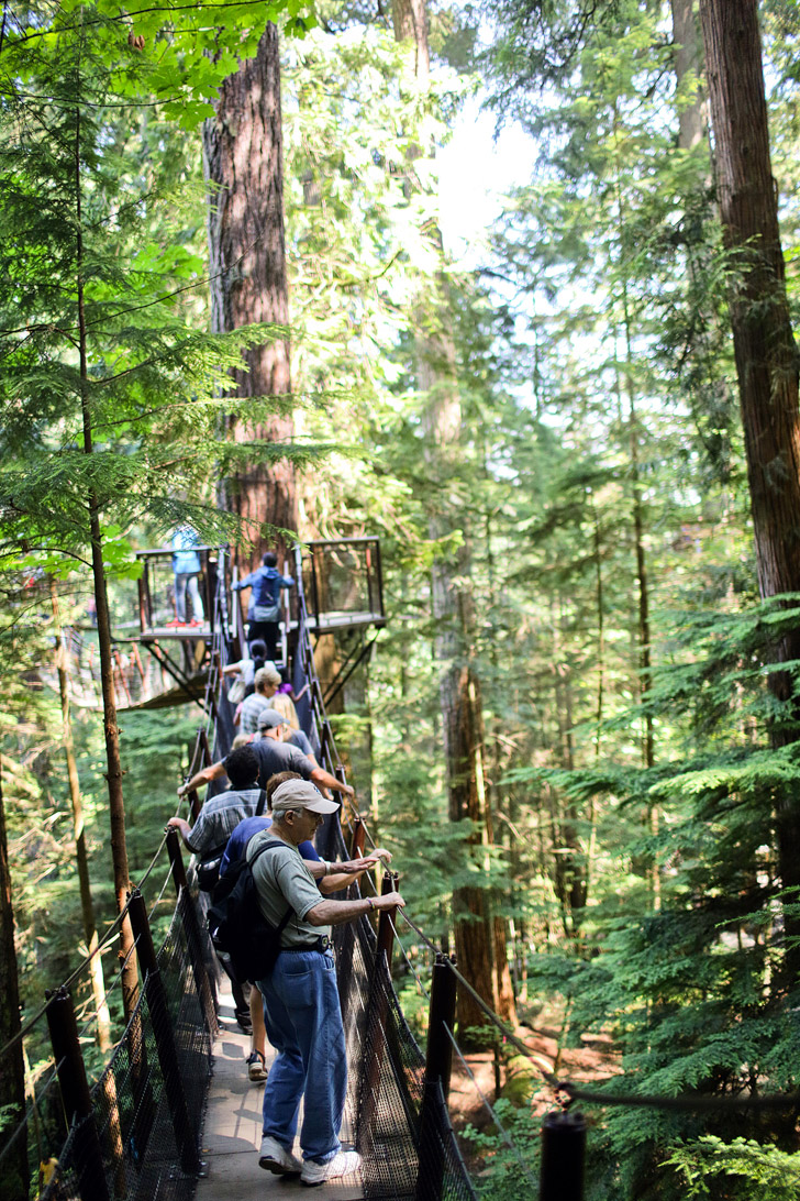 Treetops Adventures (Vancouver Tourist Attractions).