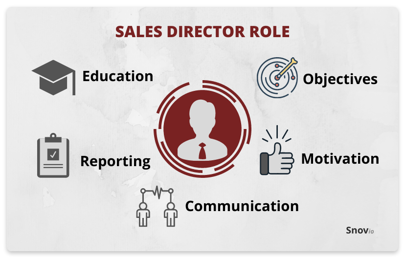 Sales director role
