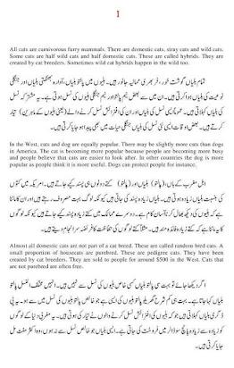 Essay on my favourite pet cat in urdu