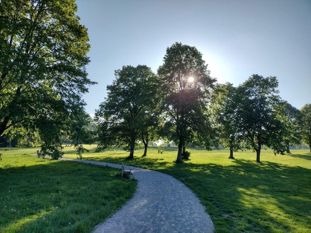 Motorola Moto G50 photo sample in daylight