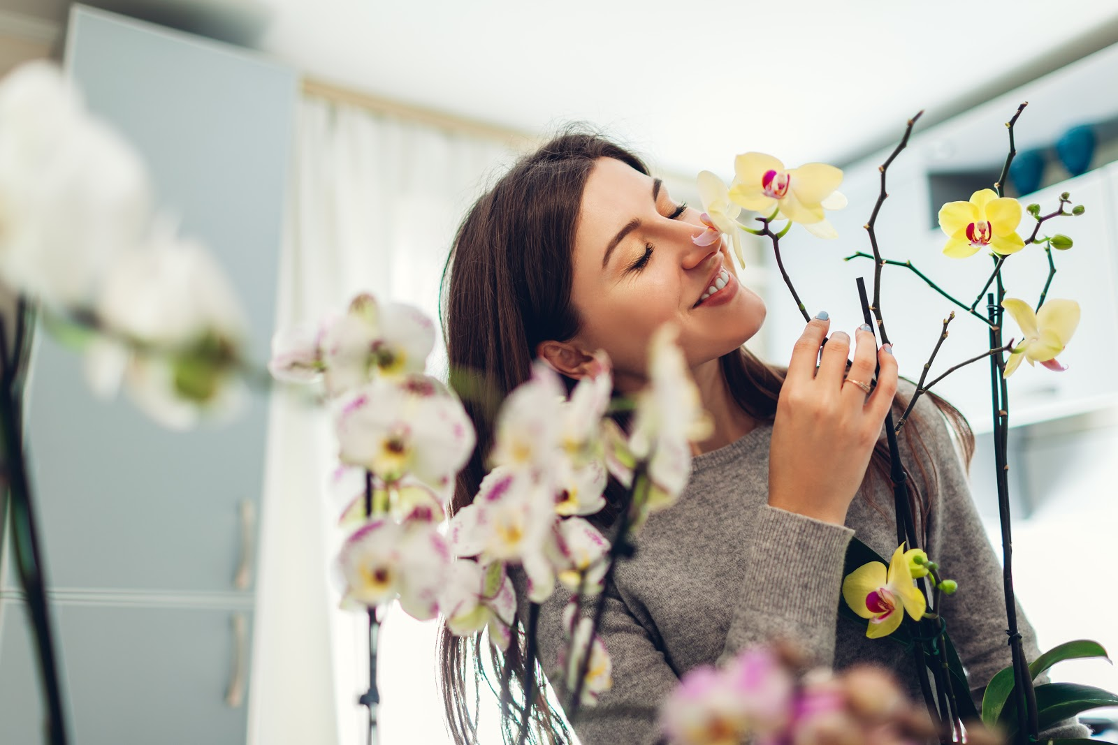 A woman enjoying her houseplants