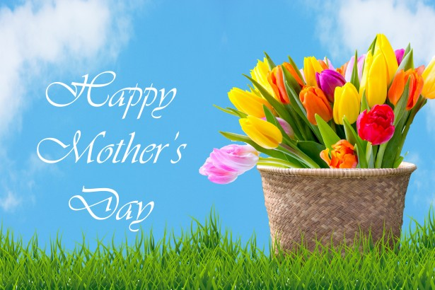 Tulips In Basket Mother's Day Card Free Stock Photo - Public ...