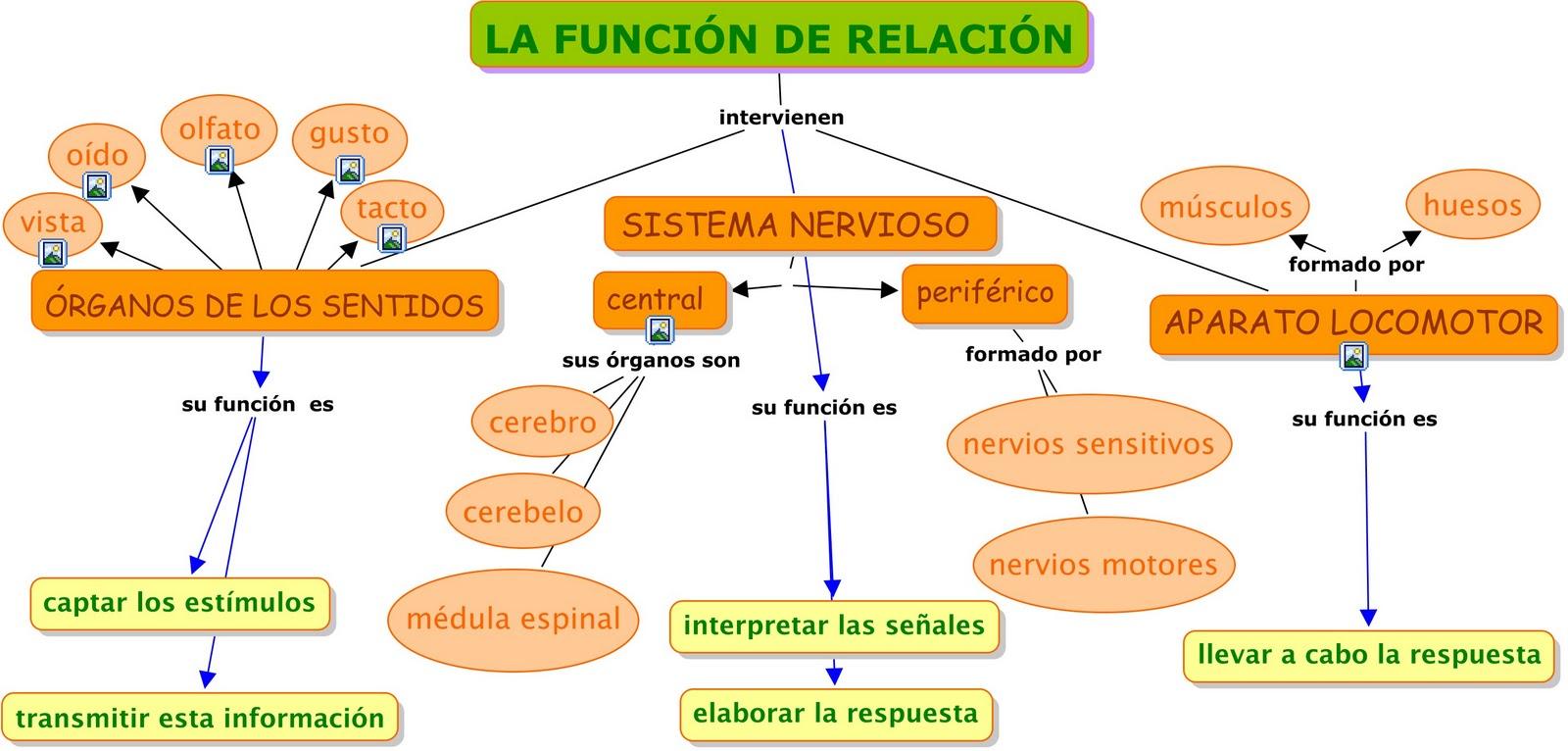 Resultado de imagen de la función de relación