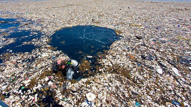 「ocean plastic」の画像検索結果