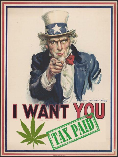 cannabis taxes