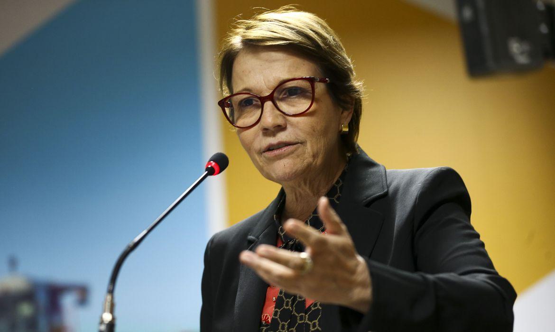 Comitê de Crise nomeado pela ministra Tereza Cristina tem o desafio de pensar em ações de curto e longo prazos. (Fonte: EBC/reprodução)
