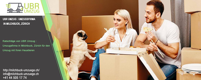 Ratschläge von UBR Umzug : Umzugsfirma in Milchbuck, Zürich für den Umzug mit Ihren Haustieren