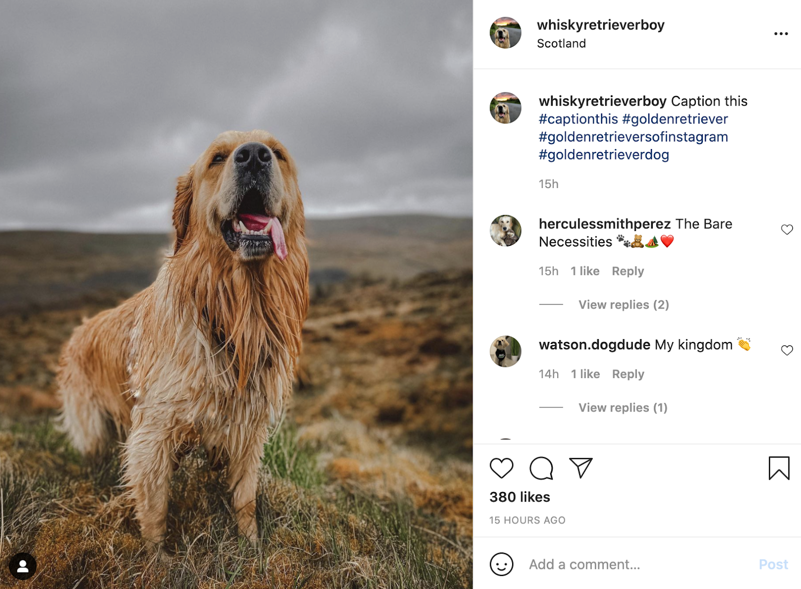 instagram captions to get more comments