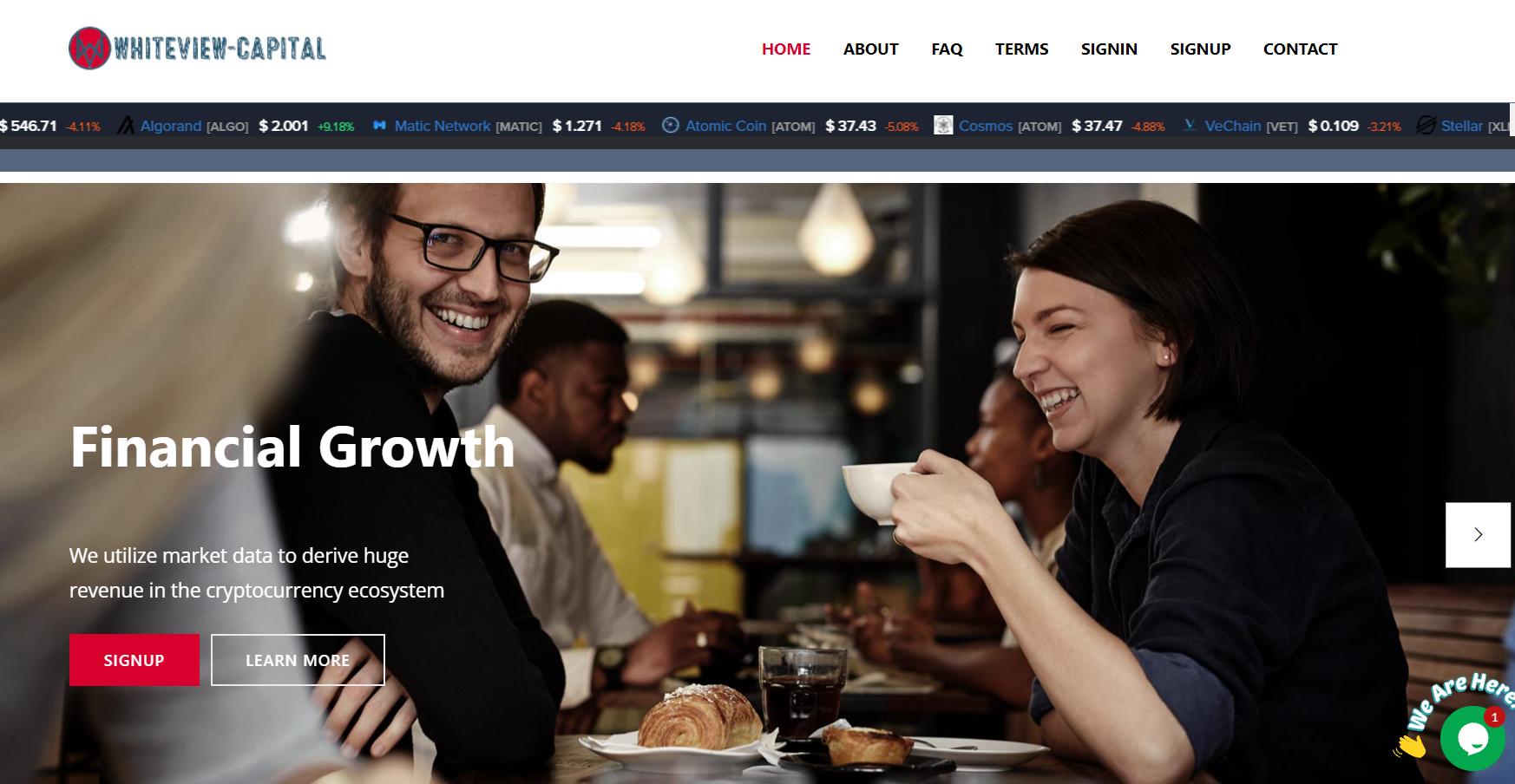 Отзывы о Whiteview-Capital: разбираем обещания проекта — Обман? реальные отзывы