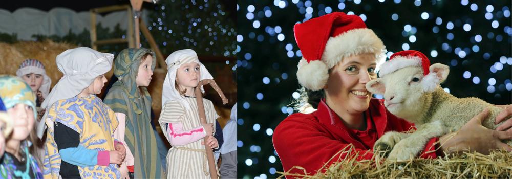 Christmas festivities at Pennywell farm attraction.