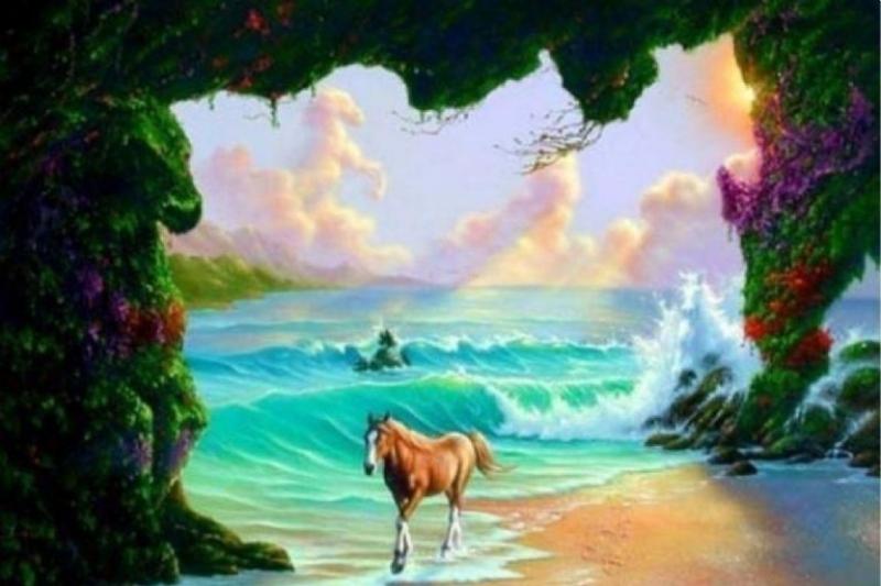 teste de cavalo 2