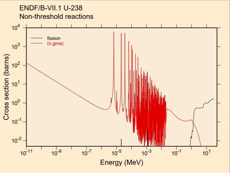 Сечение деления урана-238. Сечение радиационного захвата урана-238.