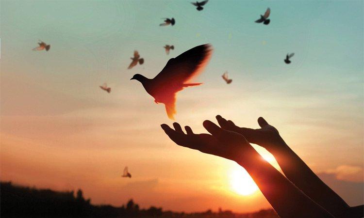 Life-Changing Forgiveness