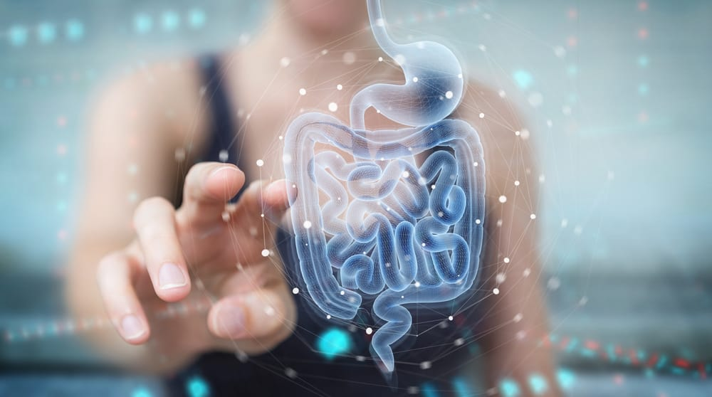 Interesting Facts That You Need to Know About Digestion
