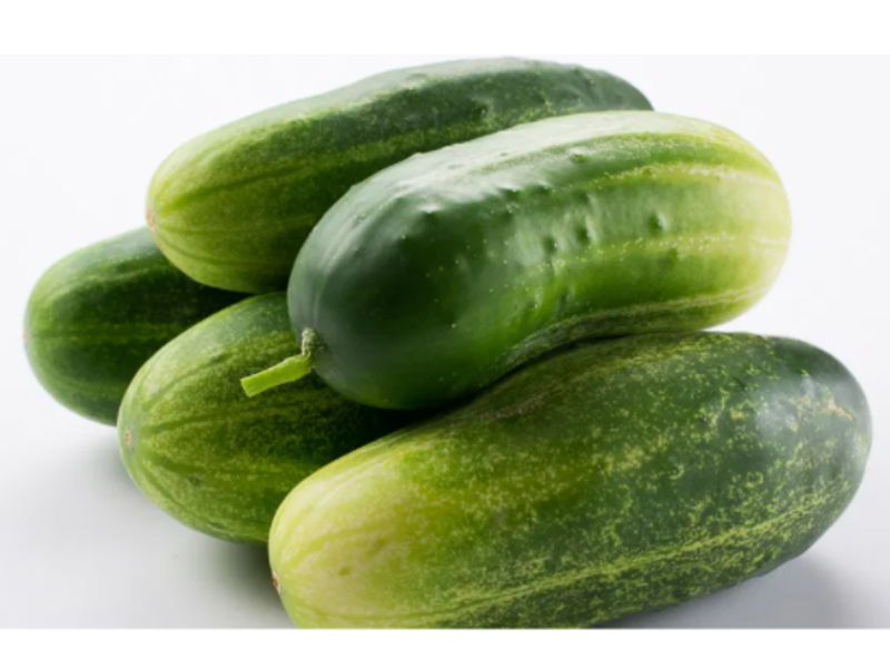 types of cucumbers