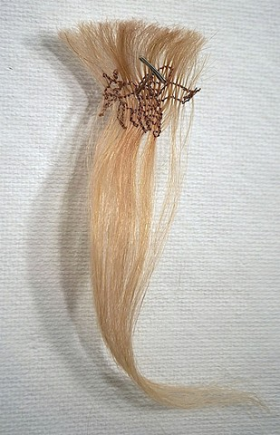 hair sculpture, stitched endangered bee